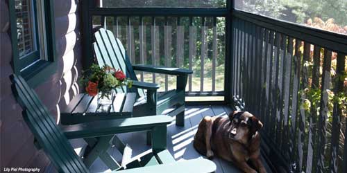 Point Lookout Porch Dog Northport ME